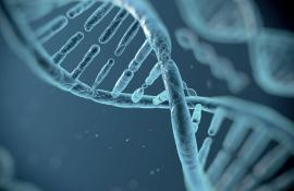Genetic analysis of complex systems