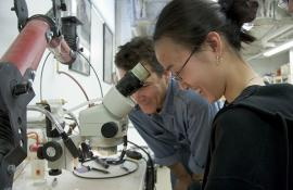 Professor Paul Sereno and a student peer through a microscope.