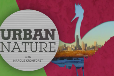 Urban Nature logo